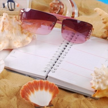 Diary Management and Travel Arrangements